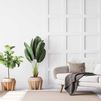 00_ICO_DEPARTAMENTO_HOME_STAGING_IFD_001